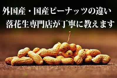 日本の落花生